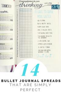 14 bullet journal layouts